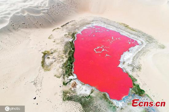 Pink lake hidden in desert in northern China shines like sapphire