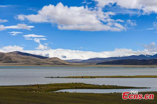 Scenery of Puma Yumco Lake in SW China's Tibet